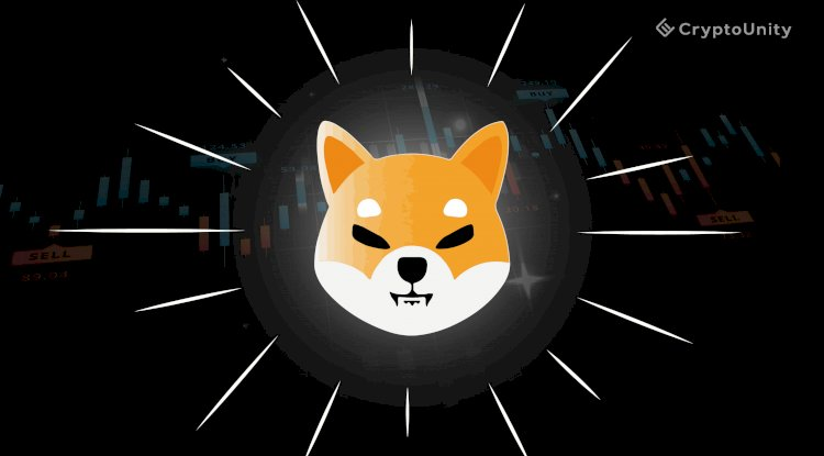 Chinese crypto traders are pushing SHIB coin known as 'Doge Killer'